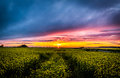 Sunset in Finnish countryside Royalty Free Stock Photo