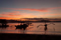 Sunset with fishing boat - Donsol Philippines Royalty Free Stock Photo