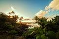 Sunset at Hawaii.