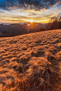 Sunset on the hill in dry winter Stock Images