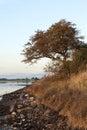 Sunset at the inlet near horsens denmark copy space Stock Photos