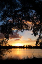 Sunset on Lake with Cottonwoods Royalty Free Stock Photo