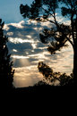 Sunset in limoux with clouds and trees france Royalty Free Stock Photography