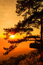 Sunset at the Lomsak cliff on Phu Kradung national park Royalty Free Stock Photo