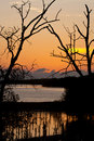 Sunset at mangrove preservation area Royalty Free Stock Photo