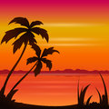 Sunset ocean summer beach with tropical palm tree over horizon Royalty Free Stock Photo