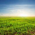 Sunset over a green  fields Royalty Free Stock Photo