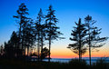 Sunset over pacific coast, Olympic National Park Royalty Free Stock Photography