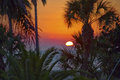 Sunset Over Palm trees Royalty Free Stock Photo