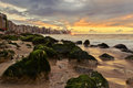 Sunset over Sea Shore with Cityscape at Horizon Line Royalty Free Stock Photo