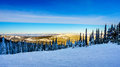 Sunset over the Snow covered trees in the winter landscape of the high alpine at the ski resort of Sun Peaks Royalty Free Stock Photo