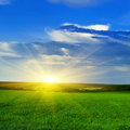Sunset over a spring field Royalty Free Stock Photo