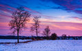 Sunset over trees and snow covered farm fields in rural Frederic Royalty Free Stock Photo