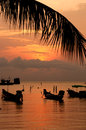 Sunset with palm and boats on tropical beach longtail ko tao island thailand Stock Photo