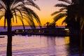 Sunset palms Royalty Free Stock Photo