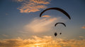 Sunset para gliding two silhouetted gliders soar with seagulls towards the setting sun Royalty Free Stock Photos