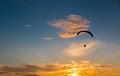 Sunset para gliding two silhouetted gliders soar with seagulls towards the setting sun Stock Photo