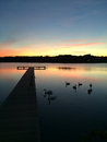 Sunset pier a beautiful on a or dock with swans floating nearby Royalty Free Stock Photo