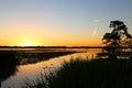 Sunset on Reelfoot Lake Royalty Free Stock Photo