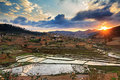 Sunset rice fields madagascar beautiful over the hills and in Stock Photos