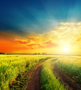 Sunset and road in green fields Royalty Free Stock Photo