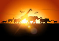 Sunset safari wildlife silhouetted against a vector illustration Royalty Free Stock Images