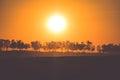 Sunset in the Sahara desert - Douz, Tunisia. Royalty Free Stock Photo