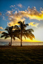 Sunset scene at tropical beach resort silhouette Stock Image