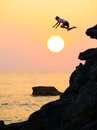 Sunset sea leap a young boy leaping from a rock into the at Stock Photography