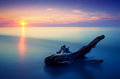 Sunset seascape long exposure water with log Royalty Free Stock Images
