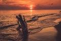 Sunset seascape orange Royalty Free Stock Photo