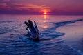 Sunset seascape purple Royalty Free Stock Photo