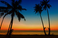 Sunset on tropical beach scenery landscape top view paradise lagoon island koh chang with green palm forest tree background Royalty Free Stock Images