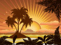 Sunset tropical island a with palms at background Stock Image