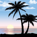 Sunset View beach resort with palm trees wallpaper.