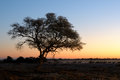 Sunset at the waterhole at the Okaukeujo Rest Camp, Etosha Natio Stock Photography