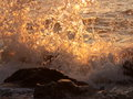 Sunset waves picture sea scene stock photo with orange wave splashes water colored by sunlight Stock Image