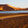Sunshine in the lake yellow desert of morocco sand and dune Stock Photography