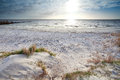 Sunshine over sand beach and north sea netherlands Stock Photography