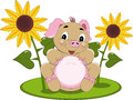 Sunshine Piglet Royalty Free Stock Images