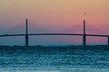Sunshine Skyway Bridge at Sunrise with bird Royalty Free Stock Photo