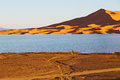 Sunshine in the yellow desert sand and dune of morocco lake Royalty Free Stock Photos