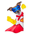 Super hero dog with red cape and a blue mask beside a blank banner Stock Photos