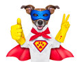 Super hero dog with red cape and a blue mask und thumb up Stock Photos