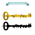 Super secret key. Old vintage retro key lock. Key opens a secret Royalty Free Stock Photo