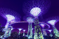 Super tree garden by the bay singapore jun night view of in gardens on june in singapore park is reclaimed land in central Royalty Free Stock Photography