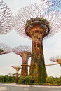 Super trees in gardens by the bay singapore artificial supertree grove as a vertical at Stock Photos