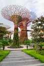 Super trees in gardens by the bay singapore artificial tree grove as a vertical at Stock Images