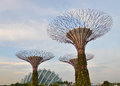 Super trees in singapore artificial s gardens by the bay Stock Photos