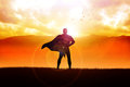 Superhero Royalty Free Stock Images